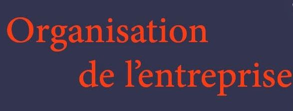 COURS ORGANISATION DES PME ET LA FONCTION QHSE PART 1