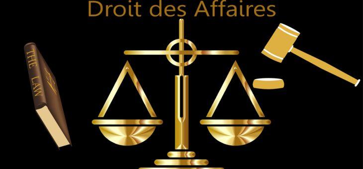 DROIT DES AFFAIRES «CAS PRATIQUES»